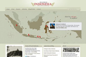 amazing indonesia web design