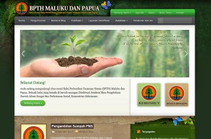bpth maluku website